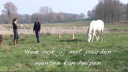 paarden en mensen
