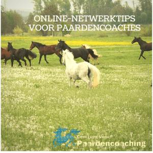 online-netwerktips