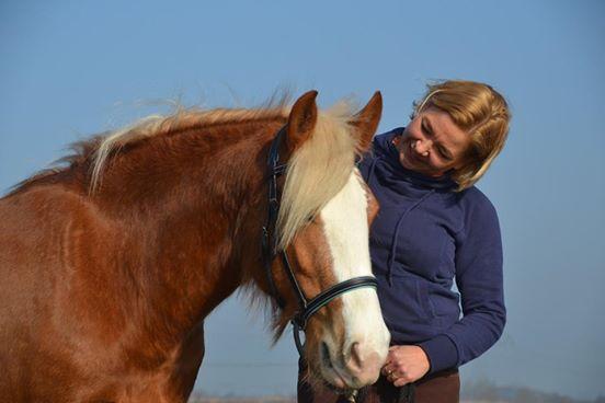 Paardencoach Melanie van Hoeve