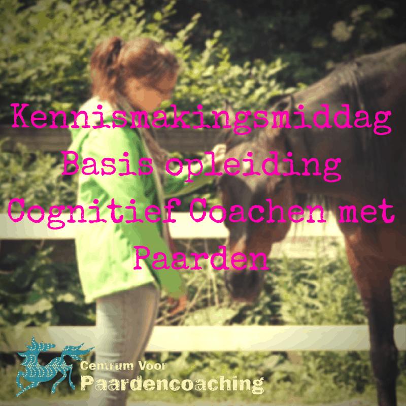 Kennismakingsmiddag_CCP