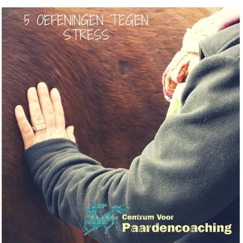 oefeningen_tegen_stress
